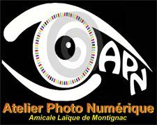 logo-APN-Q
